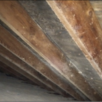 Attic Mold Remediation Before - Encapsulation Method